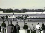 Great Lakes Downs