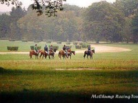 Chantilly Gallops 1998