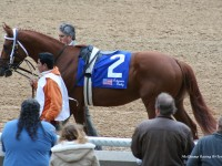 Oaklawn Park / Arkansas Derby 2007