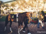 Hollywood Park racetrack