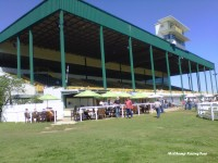 Will Rogers Downs 2012