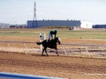 North Dakota Horse Park racetrack
